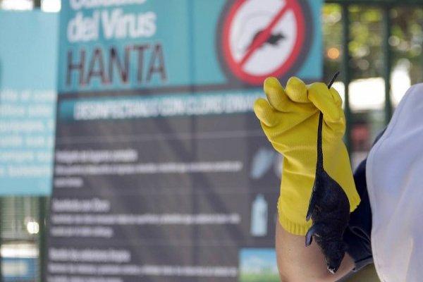 """Sur de Chile """"está en alerta"""" por Hanta en Argentina"""