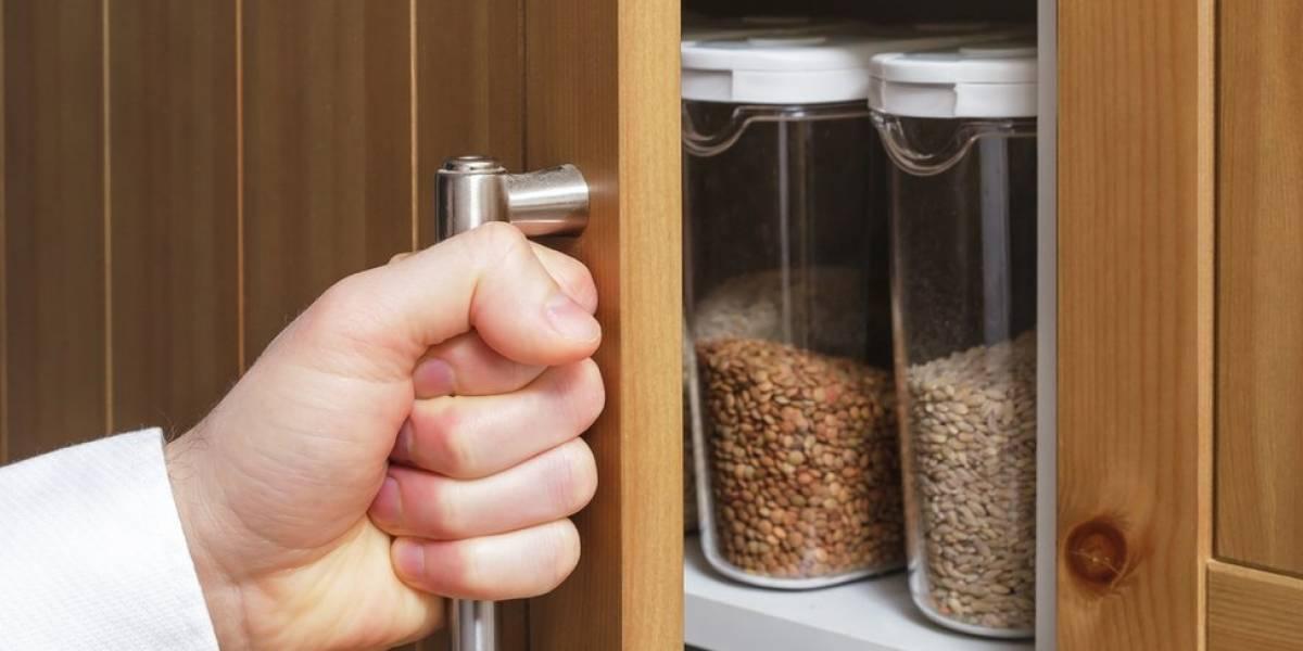 Fibras: o carboidrato que salva vidas, mas maioria das pessoas não come o suficiente