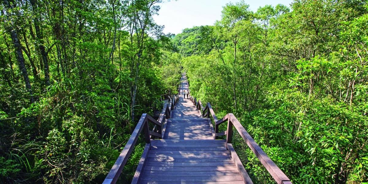 Parque Ecológico Imigrantes é primeiro do mundo com certificação de sustentabilidade; conheça