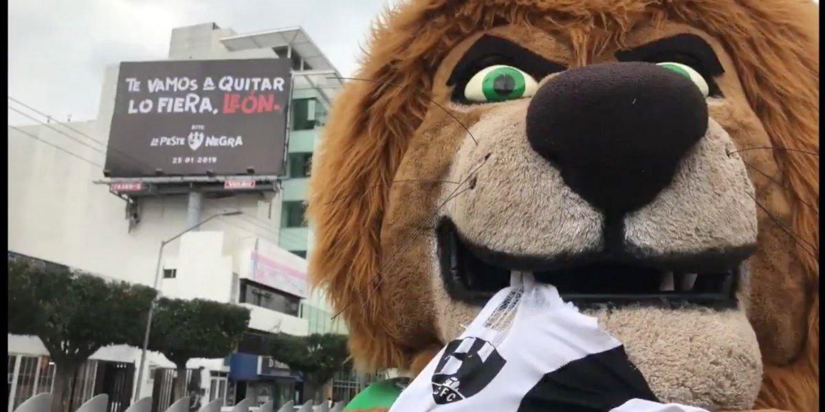 Pachuca y León responden a las 'burlas' de Club de Cuervos