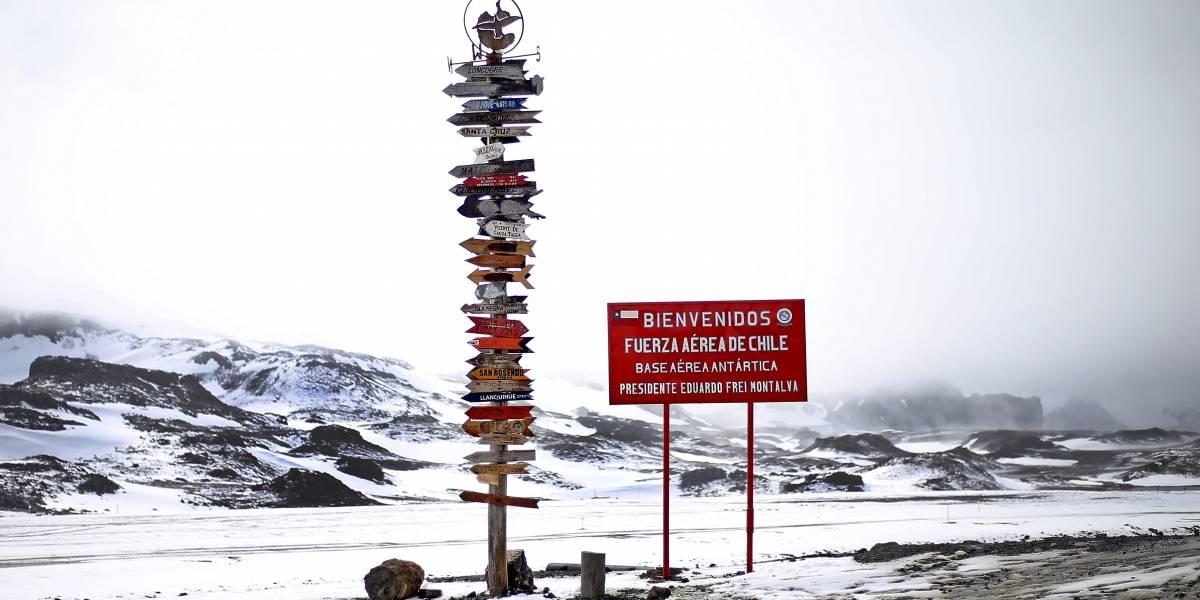 Plan de inversión Antártica: cómo es para los investigadores chilenos hacer ciencia en el fin del mundo