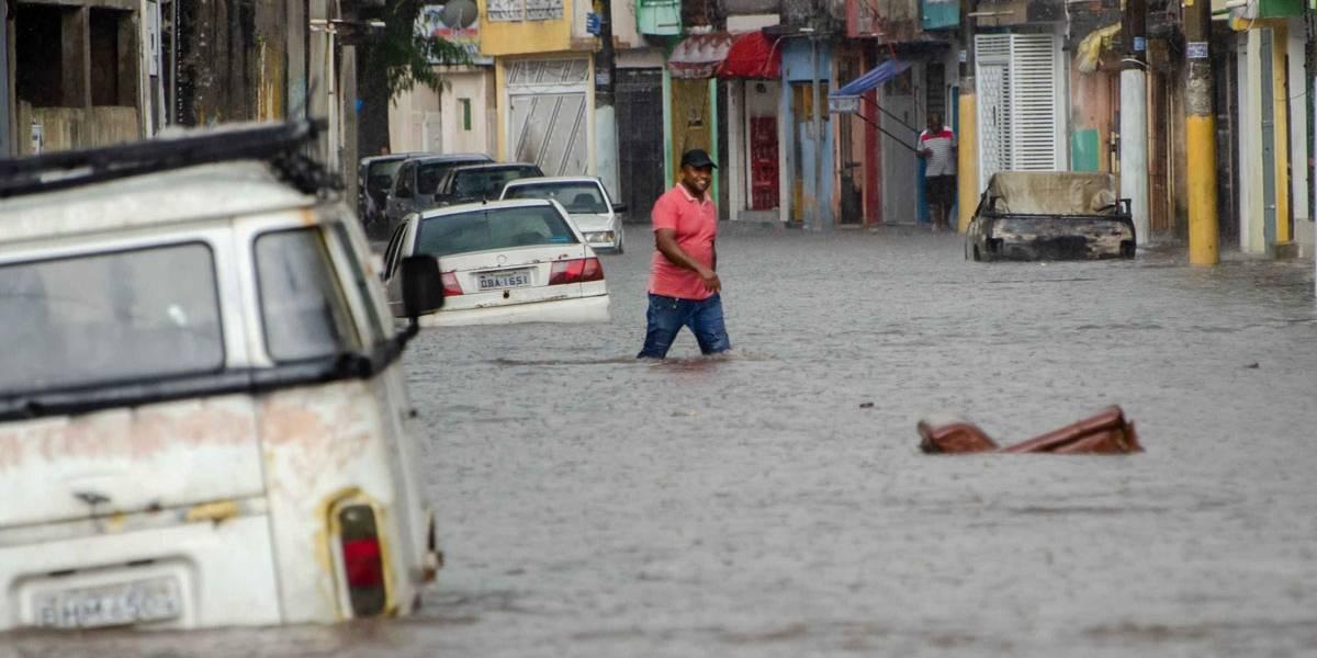 Chuva que atingiu São Paulo causou alagamentos e queda de árvore
