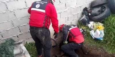 Bomberos rescatando a perrito en Quito