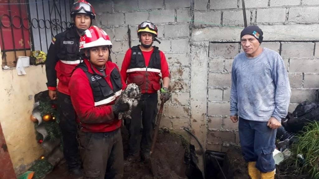 Rescate de cahorro que cayó en una zanja en la Forestal Bomberos Quito
