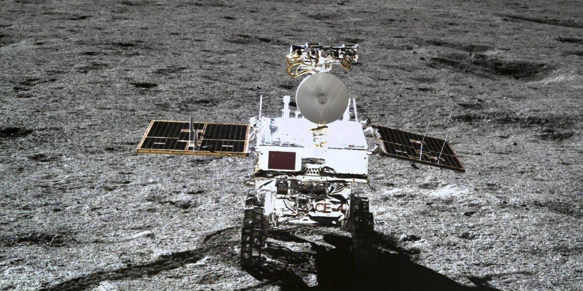 Hito histórico: germinó la primera planta en la Luna
