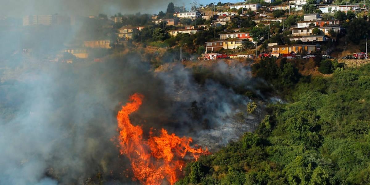 Onemi declaró Alerta Roja por incendio forestal en San Antonio