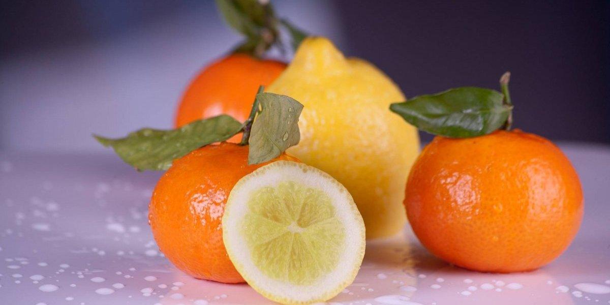 Este suco antioxidante à base de frutas cítricas é ótimo para começar o dia com saúde