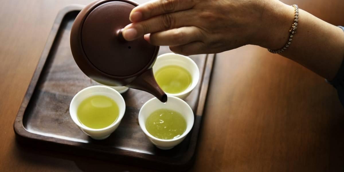 Aprende cómo tomar té verde para adelgazar y conoce 5 beneficios más de esta hierba