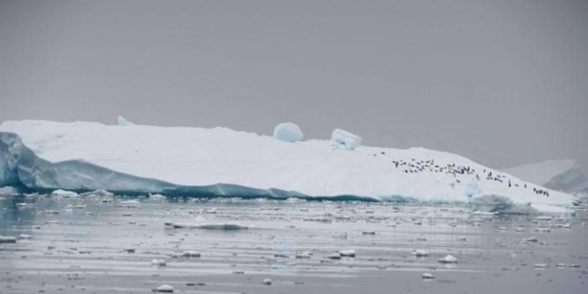 """Extraño fenómeno conocido como """"temblores oscuros"""" fue descubierto en la Antártida"""