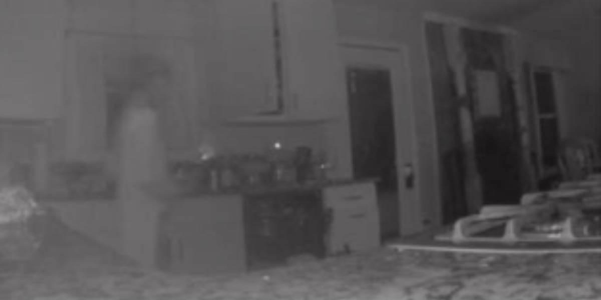 Creyó que había un extraño en su casa, fue a ver aterrorizada y no encontró nada: cuando vio las cámaras de seguridad quedó impactada