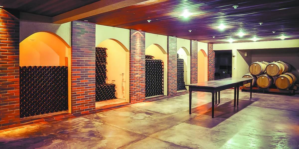 Cinco vinícolas do Paraná que valem a visita (e o vinho!)