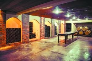 https://www.metrojornal.com.br/estilo-vida/2019/01/20/cinco-vinicolas-parana-vinho.html