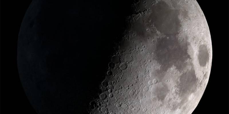 RIP: Las semillas que brotaron en la luna duraron dos días y se murieron