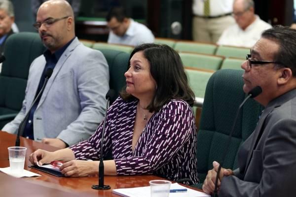 """Colegio de Abogados sostiene """"es un reto"""" crear la Nueva Ley de Armas"""