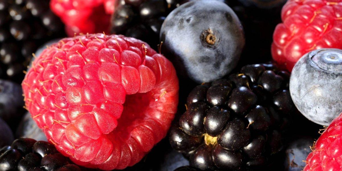 Estas 10 frutas têm a quantidade de açúcar próxima de zero; ótimas para quem faz dieta