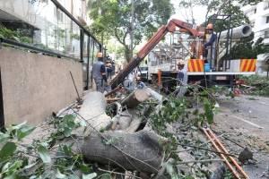 https://www.metrojornal.com.br/foco/2019/01/19/chuva-provoca-desabamento-de-casas-na-zona-sul-veja-video.html