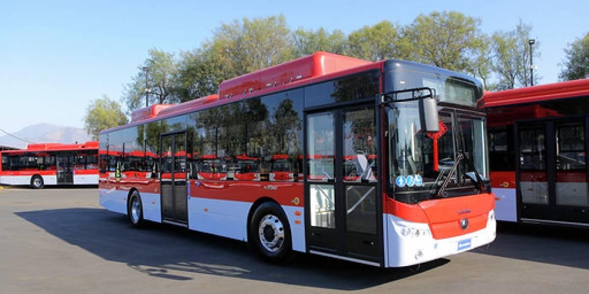 Llegaron otros 100 electrobuses del Transantiago que conectarán a Maipú y Bajos de Mena