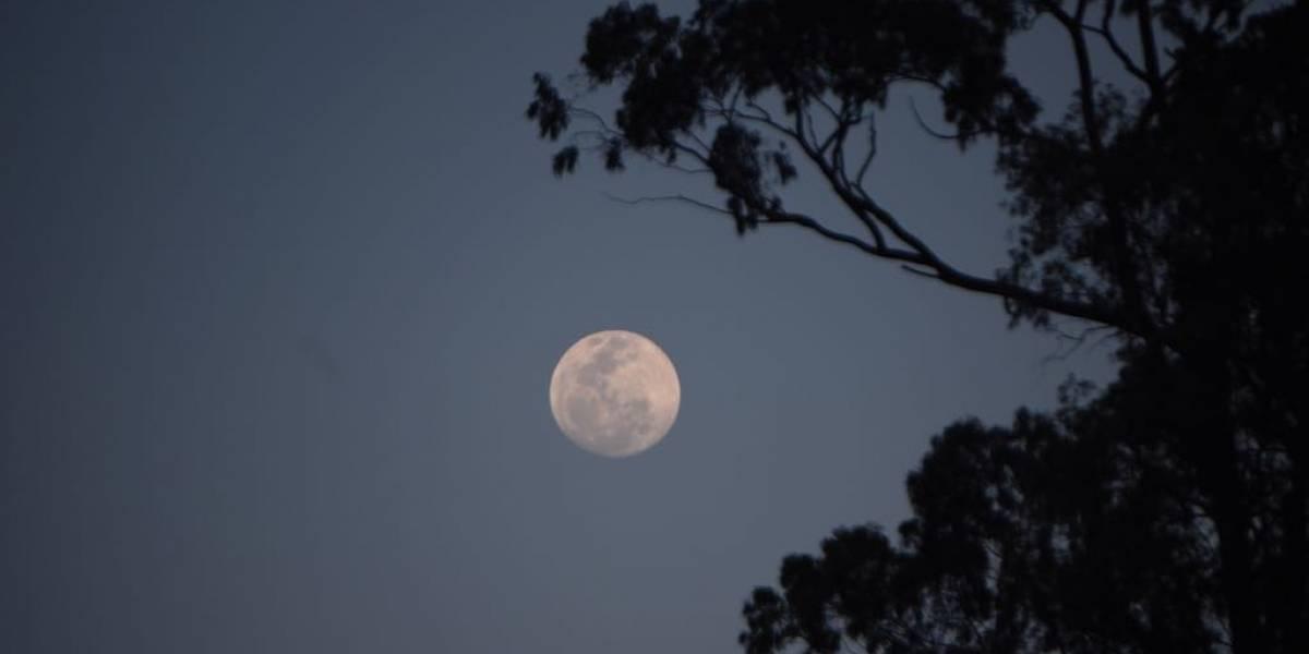 Habrá eclipse lunar, superluna y luna de sangre simultáneos