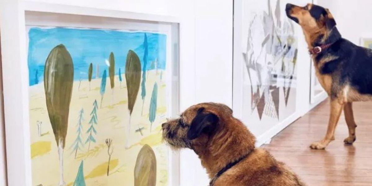 Presentan exposición artística sobre perros en Nueva York