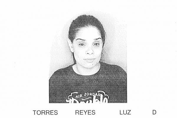 Luz D. Torres Reyes
