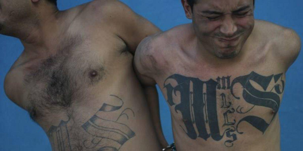 Detienen a 318 pandilleros por ola de violencia en El Salvador