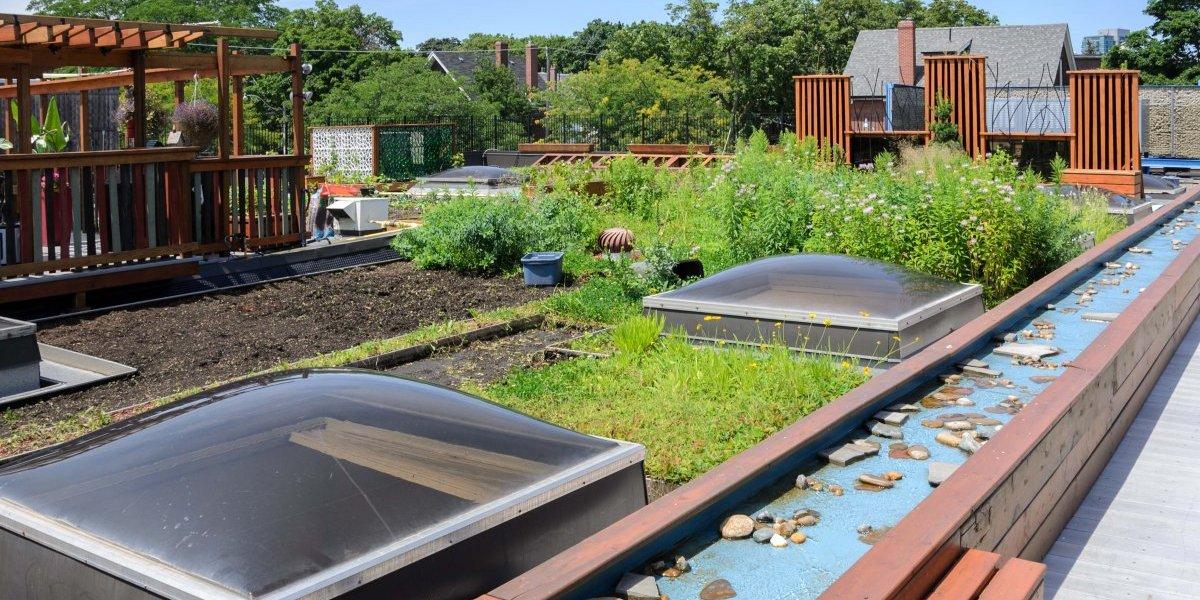 Techos verdes y jardines en las azoteas: la eco tendencia que crece en Santiago