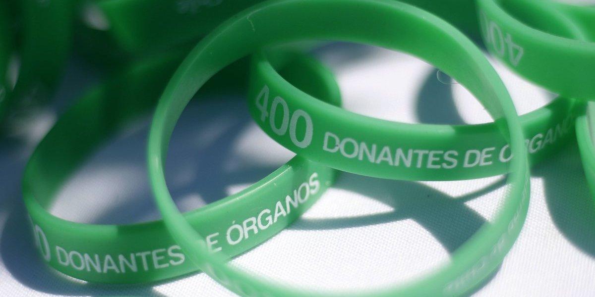 Aprobada ley que que incentiva la donación de órganos en Chile