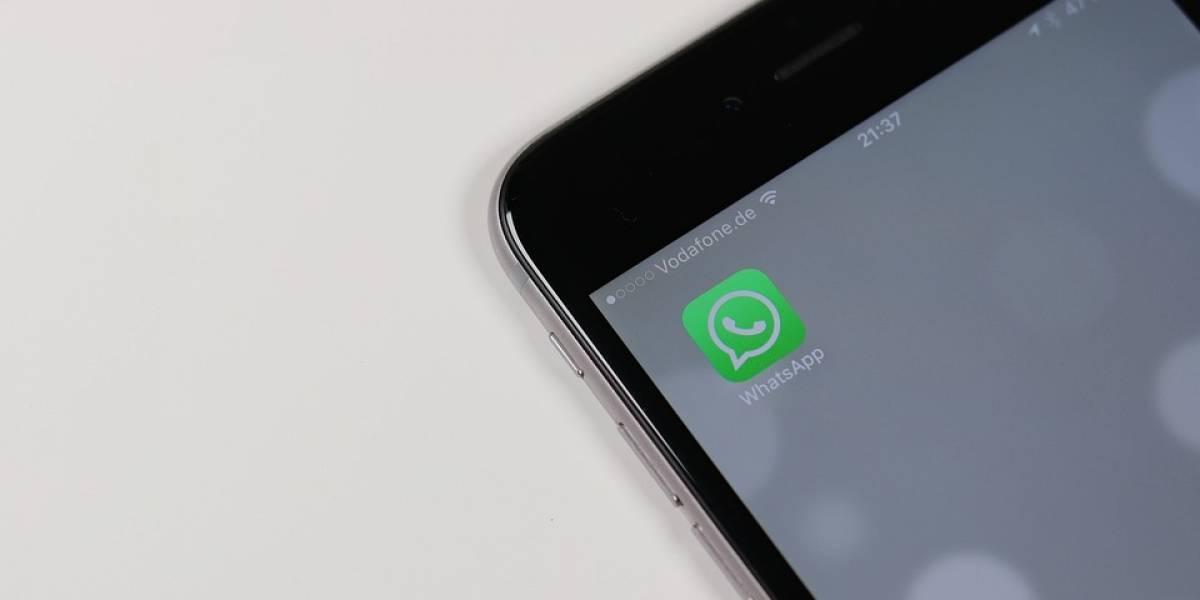 Versão beta do WhatsApp revela novo recurso do aplicativo de mensagens