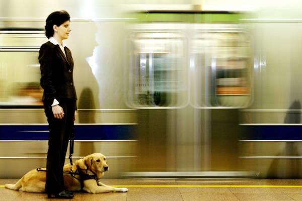 cachorro no metrô_ pessoa cega