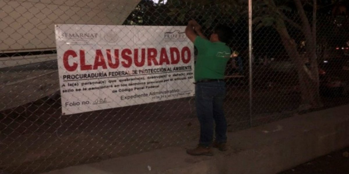 Por daño ambiental, reponen sellos de clausura en Playa Manzanillo de Acapulco