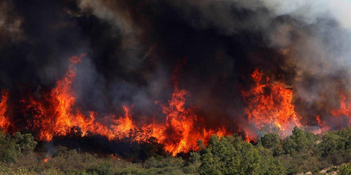 En pleno invierno: alerta preventiva en Región Metropolitana por amenaza de incendio forestal