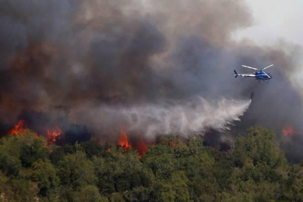 incendio forestal casablanca, Lo Vásquez