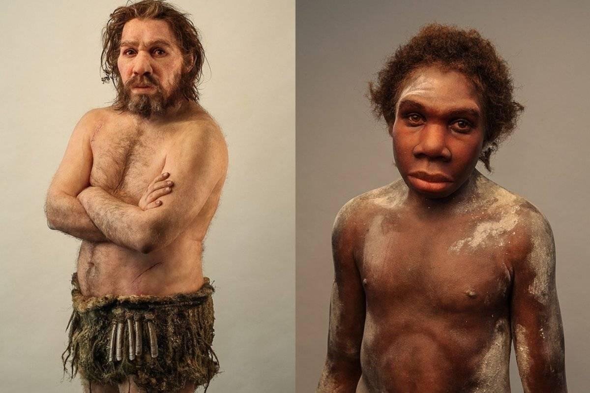 """Interesante descubrimiento: Encuentran """"el último collar de los neandertales"""" hecho con garras de águila"""