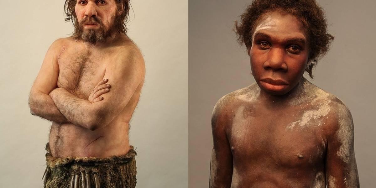 Estudio demuestra que los neandertales fueron más inteligentes de lo que pensamos