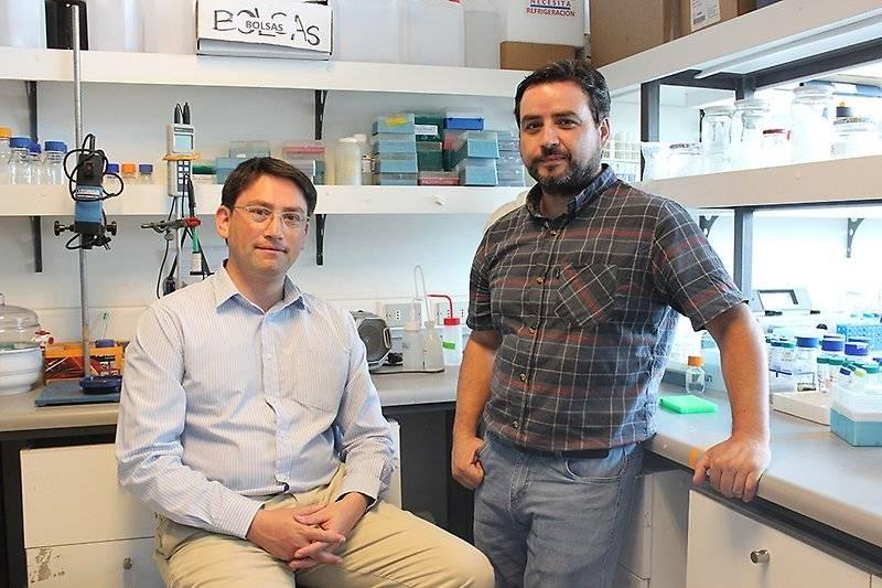 Los profesores Mario Rivera y David Vásquez de la Facultad de Ciencias Químicas y Farmacéuticas