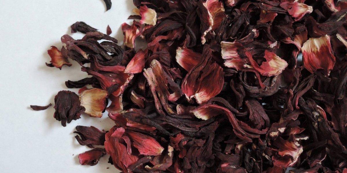 Chá de hibisco para emagrecer: veja os benefícios e por que ele é uma boa escolha para perder peso
