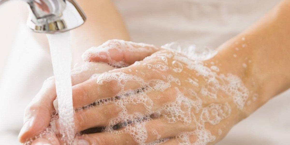 ¡Cuidado con el triclosán! científicos chilenos comprueban que antibacteriano en productos de limpieza daña el cerebro