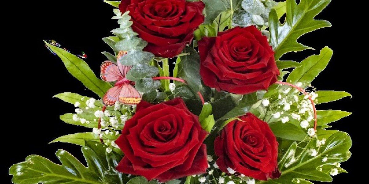 Jardín Constanza ofrece gran variedad de flores para San Valentín