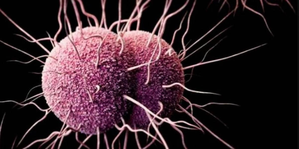 Gonorrea y sífilis aumentan en Chile: critican precaria educación sexual