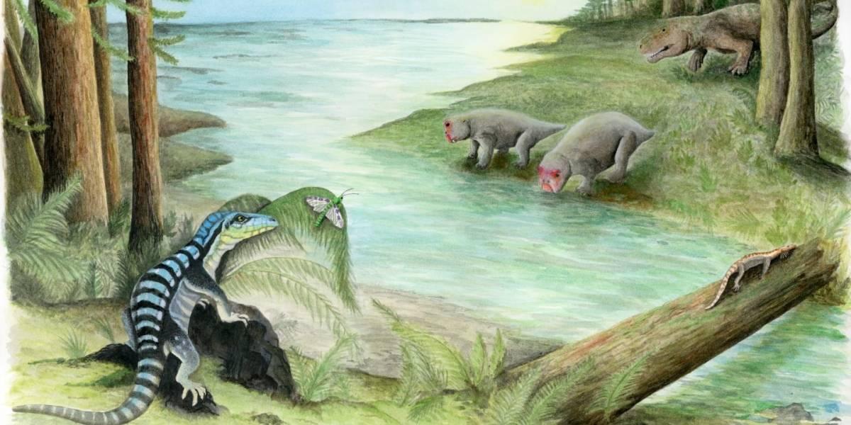 ¡Vivió en la Antártida! Descubren un extraño pariente de los dinosaurios