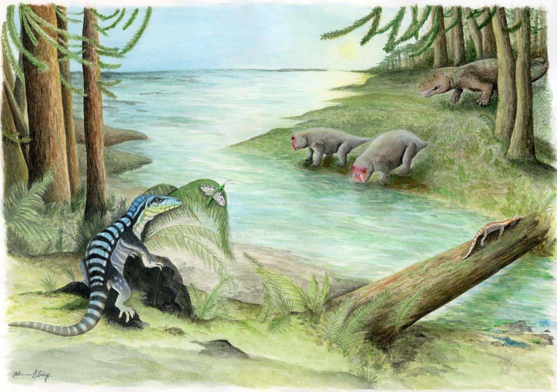Científicos encuentran un milpiés conservado en ámbar que vivió en la época de los dinosaurios