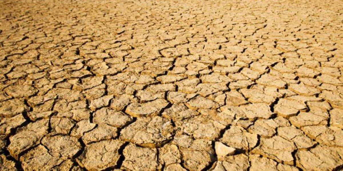 Declaran sequía en gran parte del país