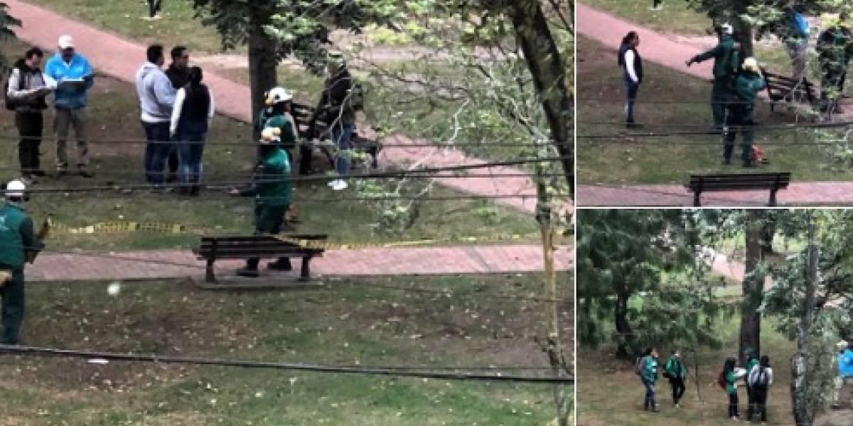 El video de ex primera dama sobre obras el parque Japón que está dando de qué hablar