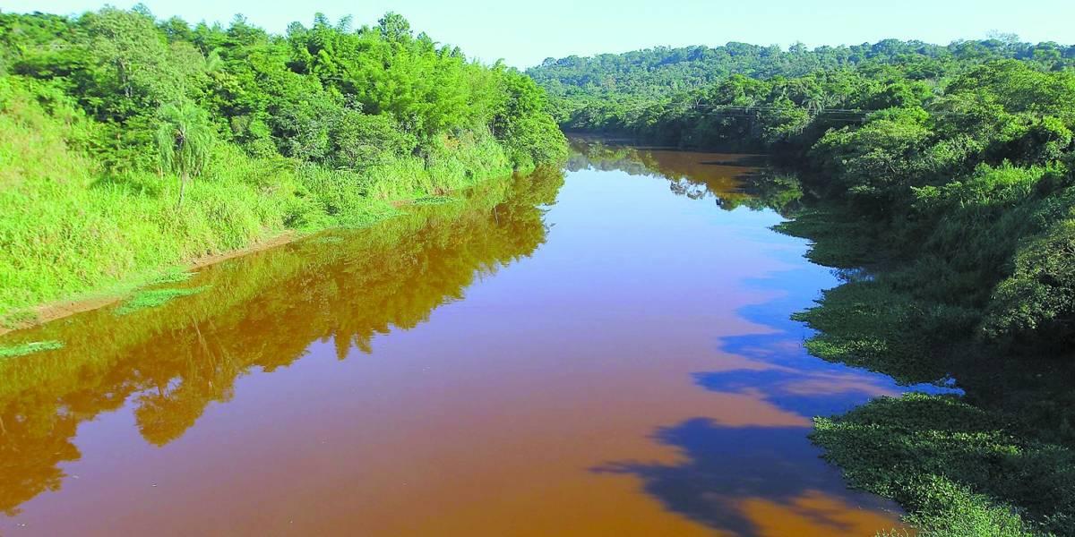 Brumadinho: Após evitar desabastecimento em BH, rio Paraopeba está contaminado