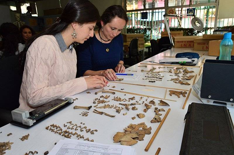 Laboratorios de la Escuela Nacional de Antropología e Historia Foto: Cortesía INAH