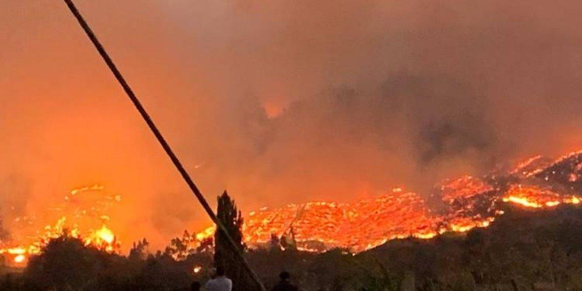 Las impactantes imágenes que dejan los incendios forestales en la comuna de Carahue