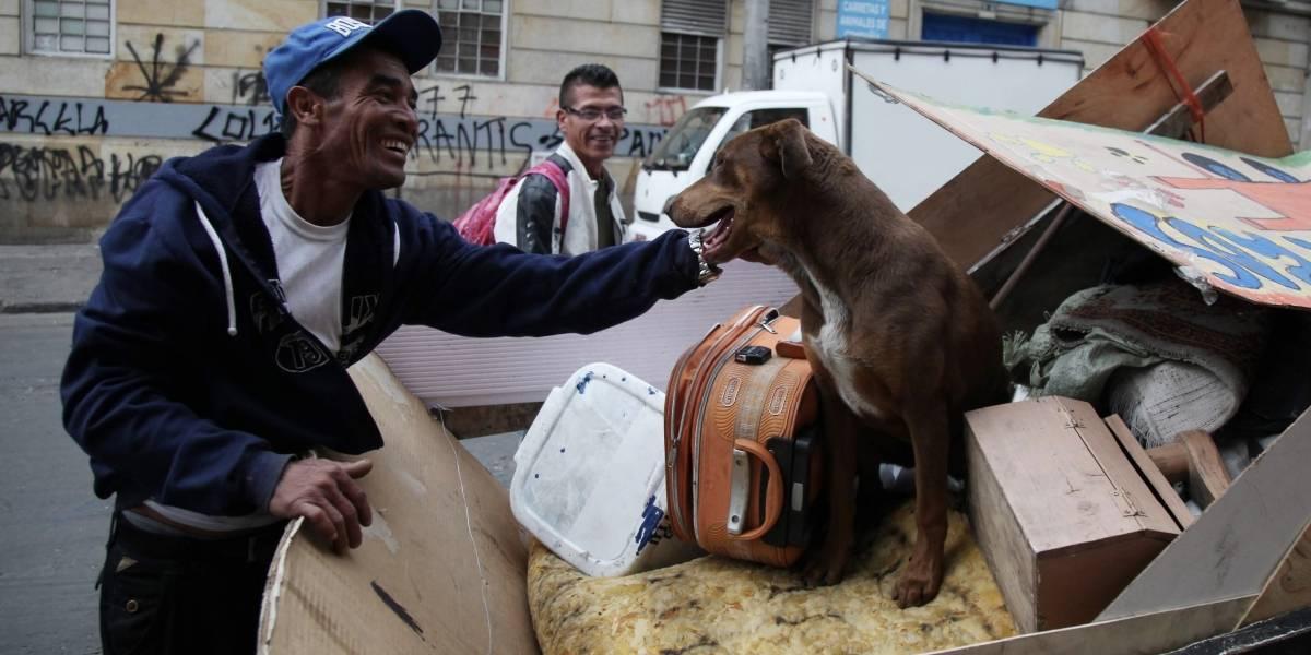 Mascotas de los habitantes de calle ahora cuentan con un hogar de paso para ser atendidos