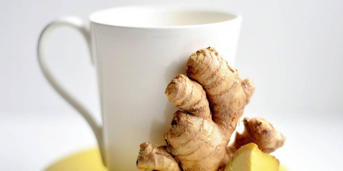 tomar chá de gengibre todos os dias emagrece