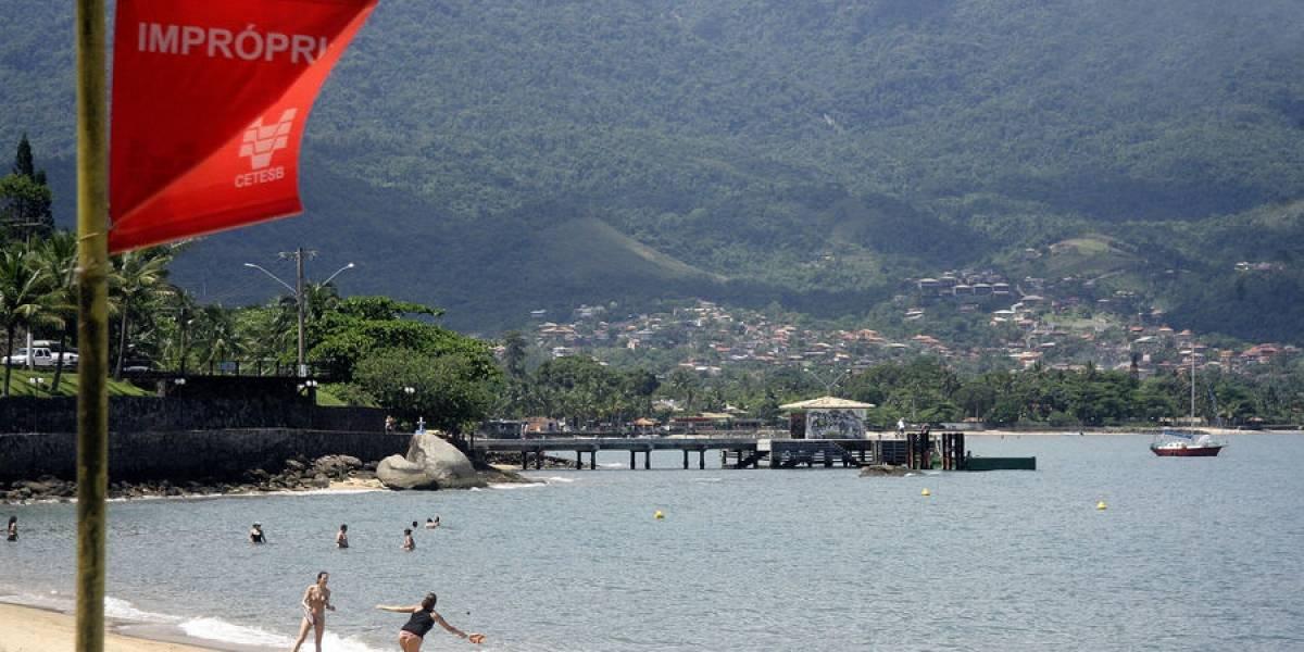 """Em meio a crise sanitária em Ilhabela, busca por """"praias impróprias"""" no Google atinge nível mais alto em 15 anos"""