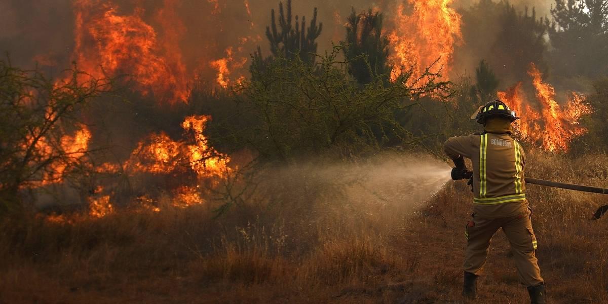 Estado de catástrofe por incendios forestales en el sur: confirman 43 focos activos